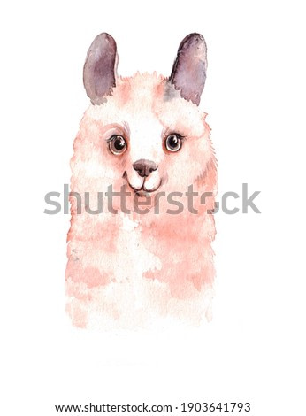 portrait of a cute llama on a neutral background. watercolor animal illustration or print for postcard