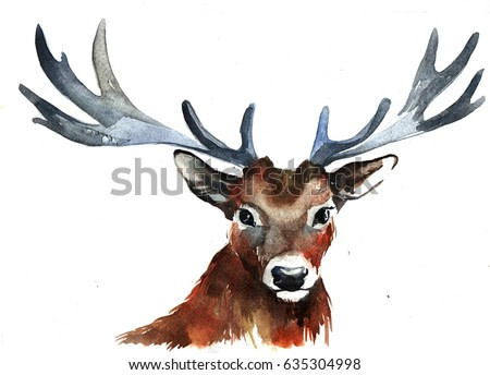 realistic cute deer on a white background. watercolor illustration
