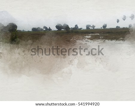 Abstract cornfield and tree on watercolor painting background and Digital illustration brush to art.