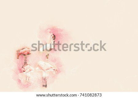 Abstract beautiful Flamingo colorful watercolor painting background.