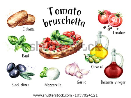 Tomato bruschetta ingredients. Watercolor hand drawn illustration, isolated on white background