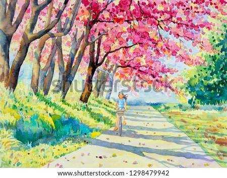 Painting watercolor landscape pink red color of Wild himalayan cherry roadside in the morning with young women cycling, nature background. Hand painted beauty winter season landmark in Thailand.