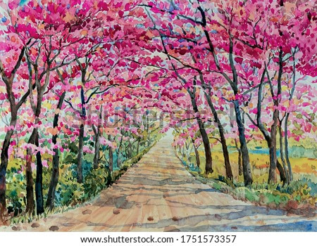 Painting watercolor landscape pink red color Tunnel of Wild himalayan cherry roadside in the morning with vintage emotion sky background. Hand painted beauty nature spring season landmark in Thailand.