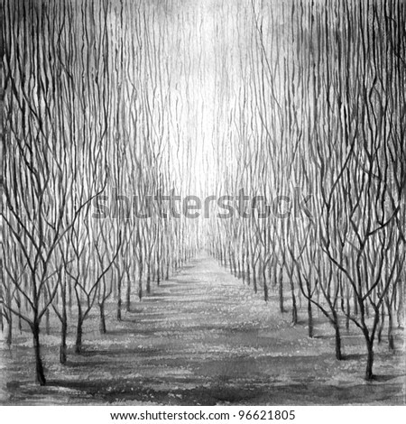 Background. Fantasy. Alley. Very high woods. Square composition. Monochrome watercolor painting.