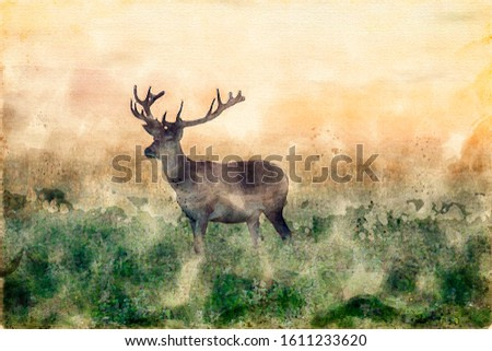 Watercolor painting of a stag deer with antlers standing in scenic nature