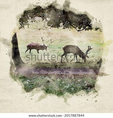 Watercolor painting of deers in a forest. Wildlife animals and deer wood scenery