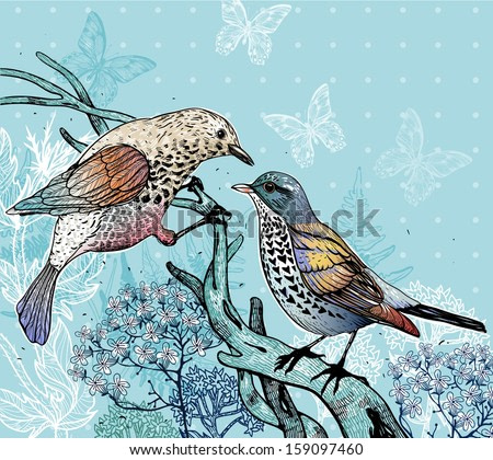 vector illustration of two forest birds and blooming plants