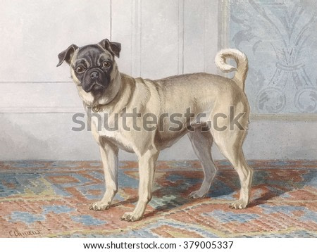 Portrait of Pug of the Vom Rath Family, by Conradijn Cunaeus, c. 1850-80, Dutch watercolor painting.